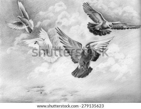 flying dove pencil drawing - photo #23