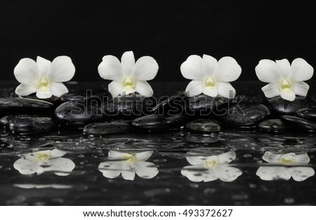 Four white orchid with therapy stones