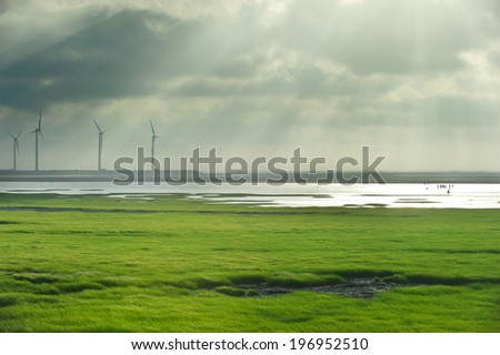 Four wind turbines work on a grassy marshland. - stock photo