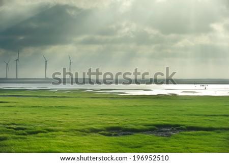 Four wind turbines work on a grassy marshland. - stock photo