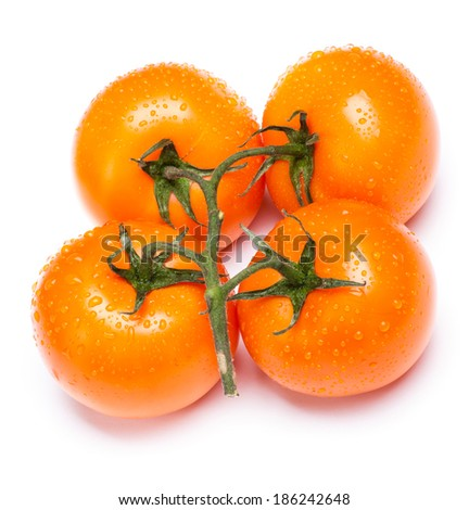 Four yellow tomatoes on a brunch isolated on a white background
