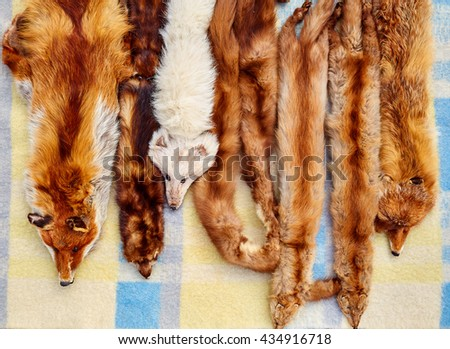 Fox animal real fur scarves at outdoor market in a row - stock photo