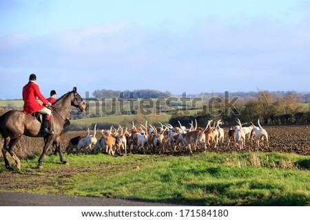 Fox Hunt - stock photo
