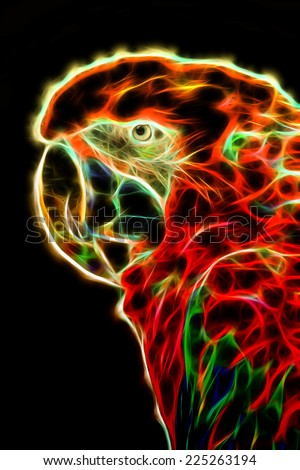 Fractal illustration of a macaw parrot - stock photo