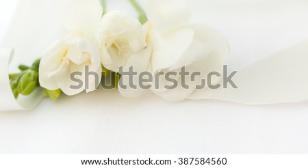 Fragile freesia flower straw on white table cloth with glossy ribbon - soft dreamy flat lay wedding invitation card - stock photo