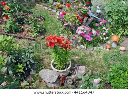 Fragment of a small flower bed on six square meters in the center of the big city. The garden is done with loving care to plants