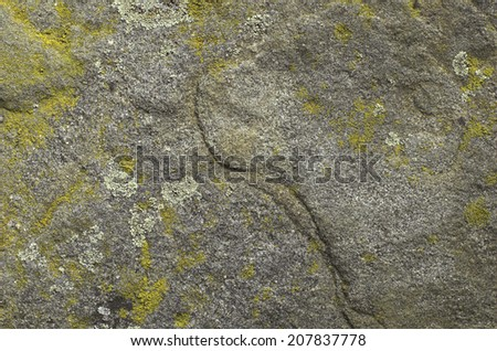 Fragment of an old stone with a moss and a lichen - stock photo