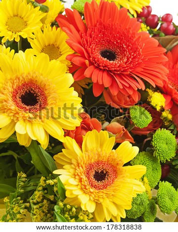 Fragment of bouquet from gerbera flowers isolated on white background. Closeup. - stock photo