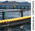 Fragment of fish farm for salmon growing in Norwegian Sea - stock photo