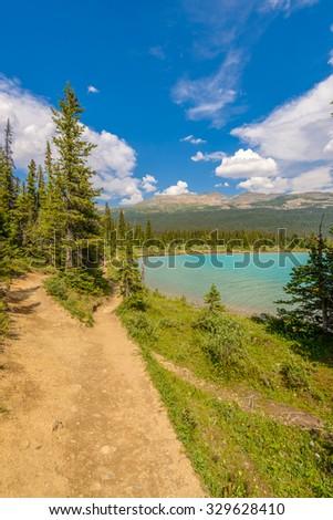 Fragment of mountain Bow lake trail in Alberta, Canada, Rocky Mountains. - stock photo