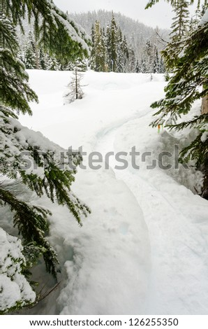 Fragment of mountain snowshoe trail in Whistler, Vancouver, Canada. - stock photo