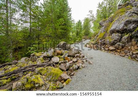 Fragment of Nita Lake Trail in Whistler, Vancouver, Canada. - stock photo