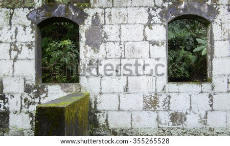 Fragment of old ruins built with stone bricks and window with plants,  - stock photo