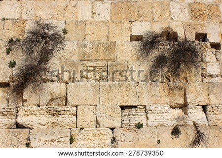 fragment of the Western Wall in Jerusalem, one of the holiest sites in the Jewish religious tradition, Israel - stock photo