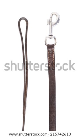 Fragments of the dog leash isolated over the white background - stock photo