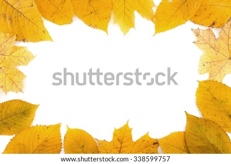 Frame composed of colorful autumn leaves isolated on white background. Top view.