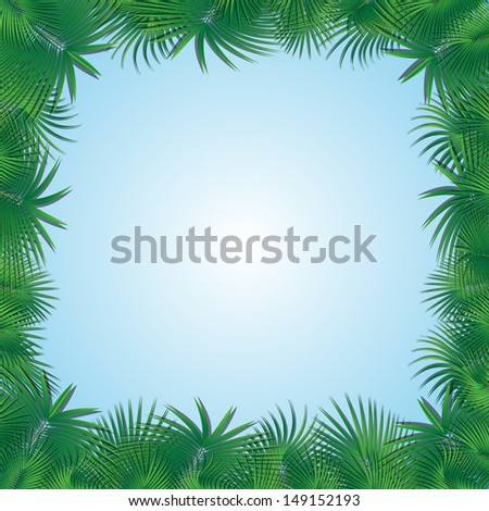 frame from a palm tree