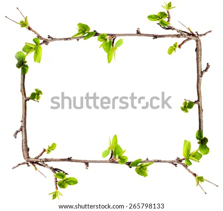 Frame Branches Green Leaves Stock Photo & Image (Royalty-Free ...