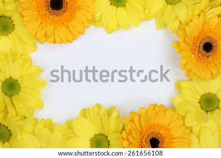 Frame from Chrysanthemums flowers in spring or mothers day with copyspace for your own text - stock photo