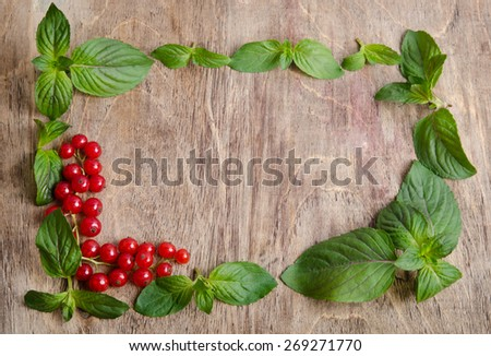 frame from mint and red currant  on wooden background - stock photo