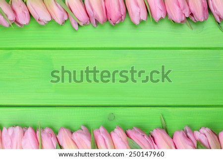 Frame from tulips flowers in spring or mothers day with copyspace for your own text - stock photo