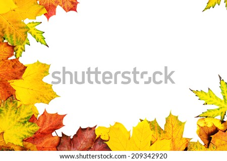 Frame from vivid colorful autumn leaves, natural seasonal background - stock photo