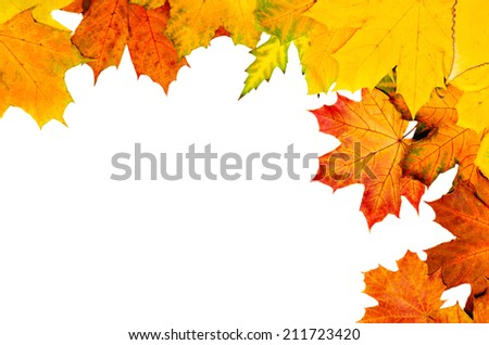 Frame from vivid colorful autumn leaves, natural seasonal background