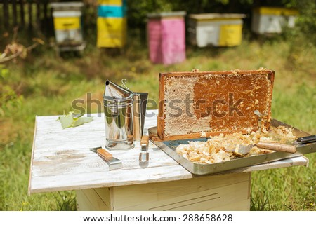 frame honey - stock photo