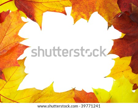 Frame made of autumn leaves