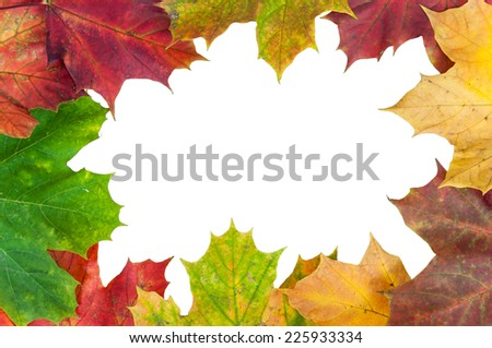Frame made of colorful autumn maple leaves isolated on white background with clipping path - stock photo