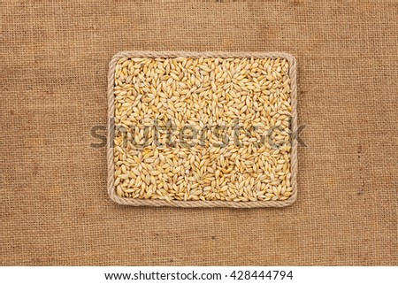 Frame made of rope with barley grains on sackcloth, view from above, with place for your text