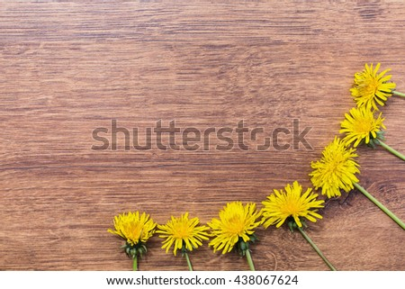 Frame made of yellow dandelions on a wooden background. Drug plants. Space for text. Vintage floral background. Flora. Spring and summer time. - stock photo