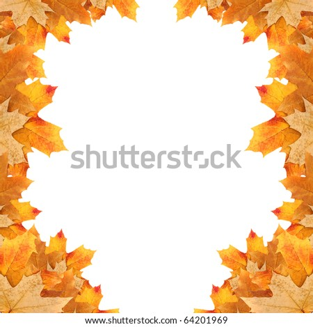 frame maple leaves - stock photo