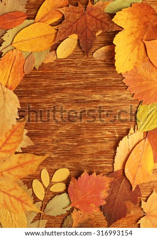 frame of autumn leaves - stock photo