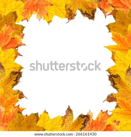 Frame of autumn leaves isolated on white