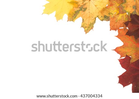 Frame of autumn leaves. Leaves are on the white background. - stock photo