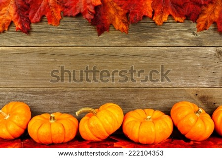 Frame of autumn pumpkins and leaves against aged wood
