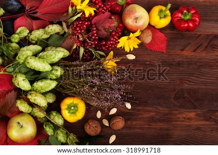 Frame of autumn vegetables, fruits, flowers and herbs on a wooden dark background; autumn still life; the substrate for the menu; autumn menu; harvesting; grapes; viburnum; pepper; hop - stock photo
