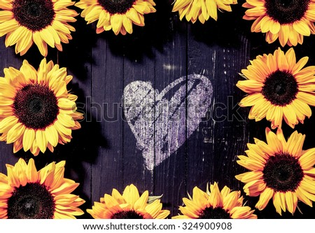 Frame of bright yellow sunflowers, or Helianthus, around a romantic hand-drawn heart shape in the centre on dark rustic boards, conceptual of love, anniversary or Valentines - stock photo