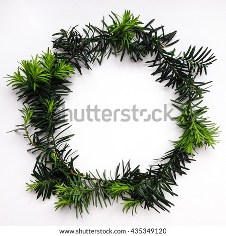 Frame of green fir branches on white background. Top view, flat lay - stock photo