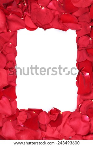 Frame of petals from roses on Valentine's and mothers day with copyspace - stock photo