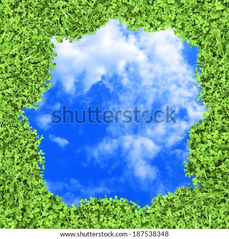 Frame of the green juicy grass on a background of blue sky