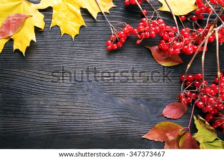 Frame of viburnum and autumn leaves on wooden background