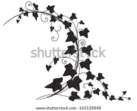 frame with branch of ivy - stock photo