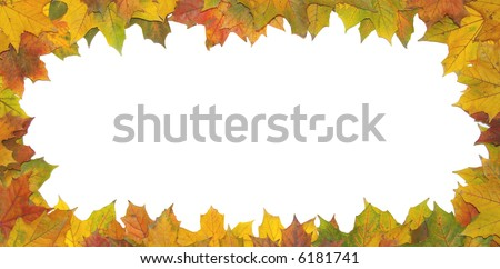 Frame with colored autumn maple leaves - white background