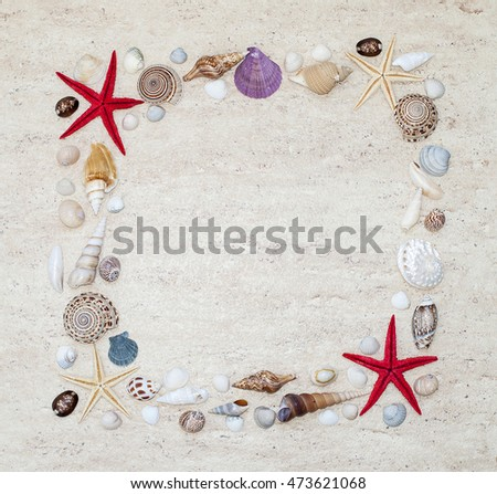 Frame with colorful shells and starfishes