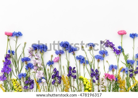 Frame with flowers on white background. Top view, flat lay
