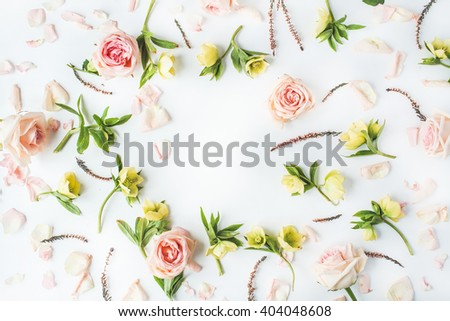 frame with pink roses, branches, leaves and petals isolated on white background. flat lay, overhead view - stock photo