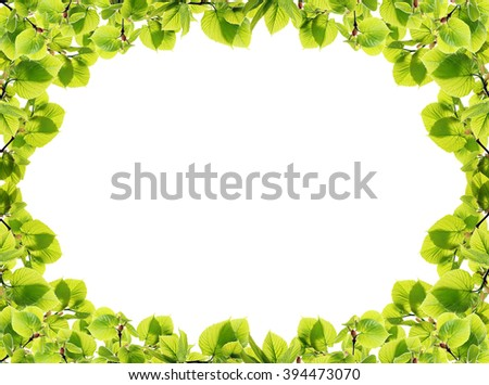 Frame with spring twigs with green leaves, on white background