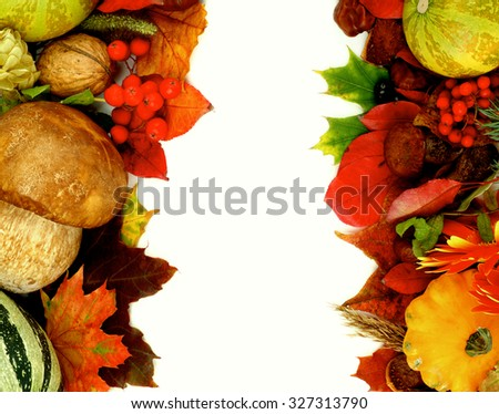 Frames Autumn Harvest with Leafs, Vegetables, Berries, Rowan, Mushrooms, Flowers and Nuts isolated on white background